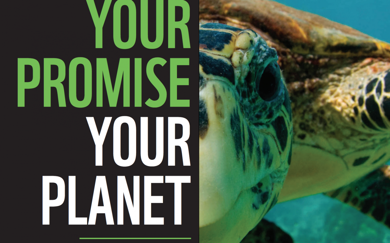 WWF - Promise for the planet poster